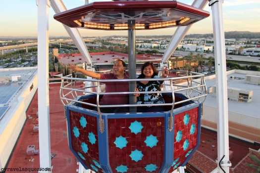 Cyra Velasquez and family riding the ferris wheel at the Irvine Spectrum.